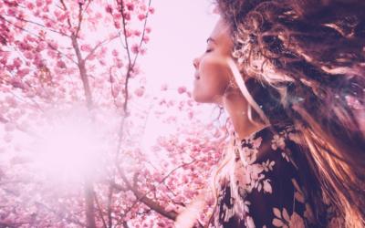 Le printemps et sa folie créative